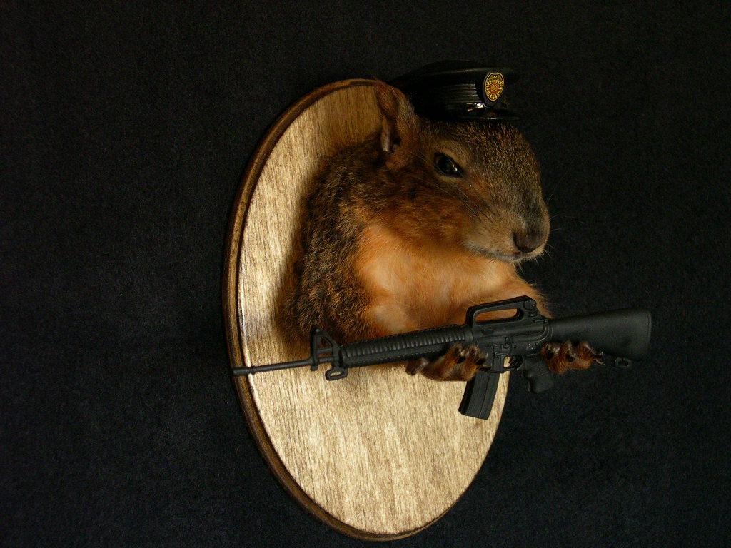 Rick's Custom Squirrels via BHG/Alicia's Twitter.