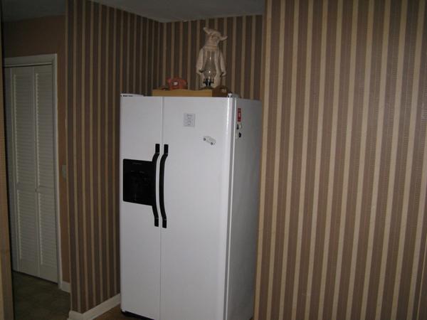 fridge pantry before