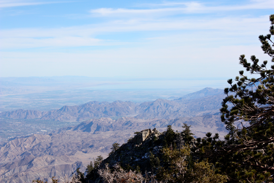 View of PS and Salton Sea from MSJ